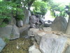 VFSH0026